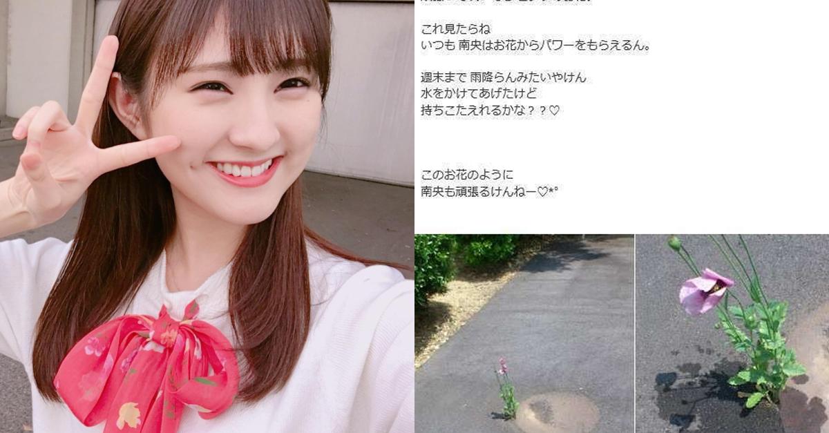 어느 걸그룹이 꽃에 물주는 사진 올렸다가 체포된 이유