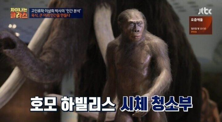 대머리가 진화한 인류라는 진짜 증거.....