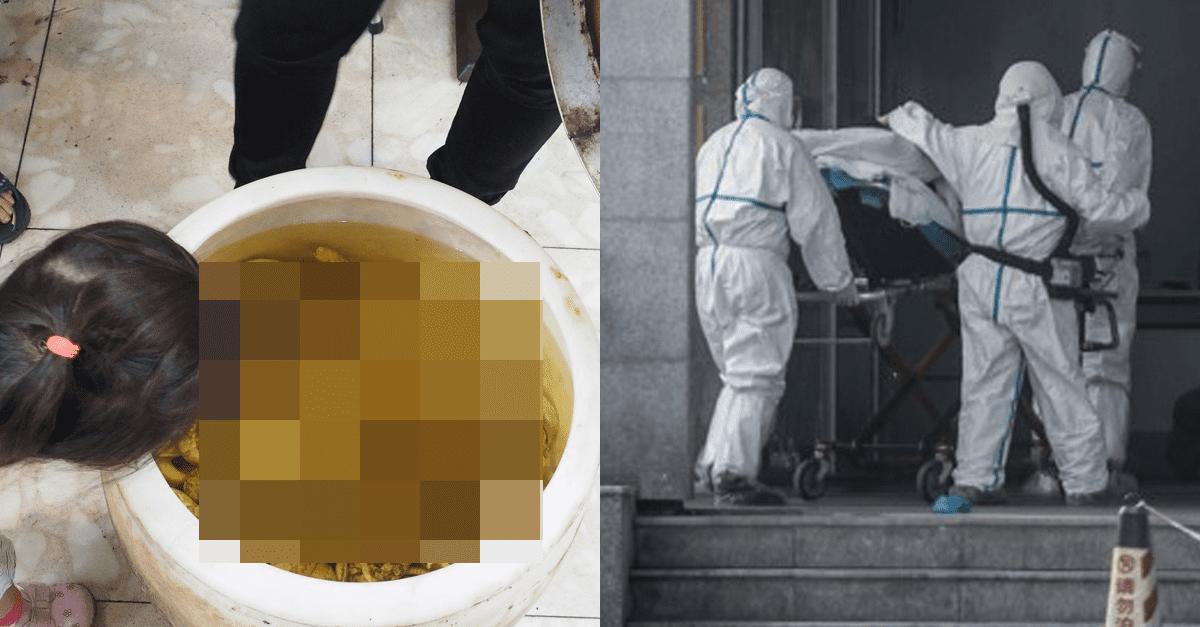 중국에서 신종 폐렴이 생기게 된 음식의 정체