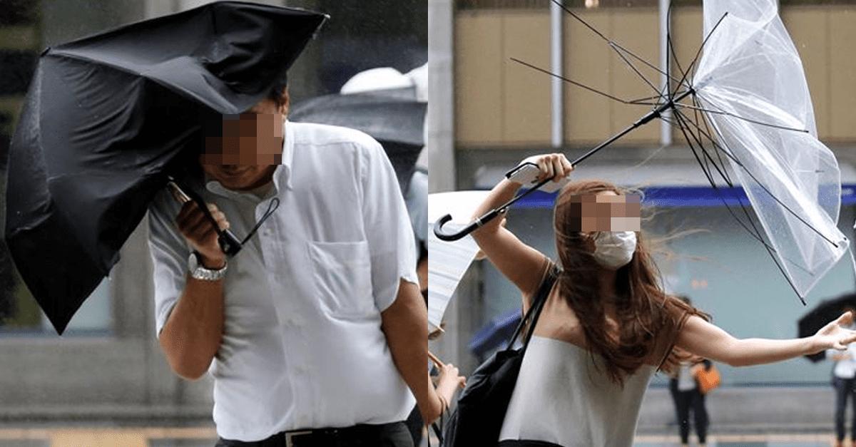'우산' 엄청 오래 사용할 수 있는 보관 방법