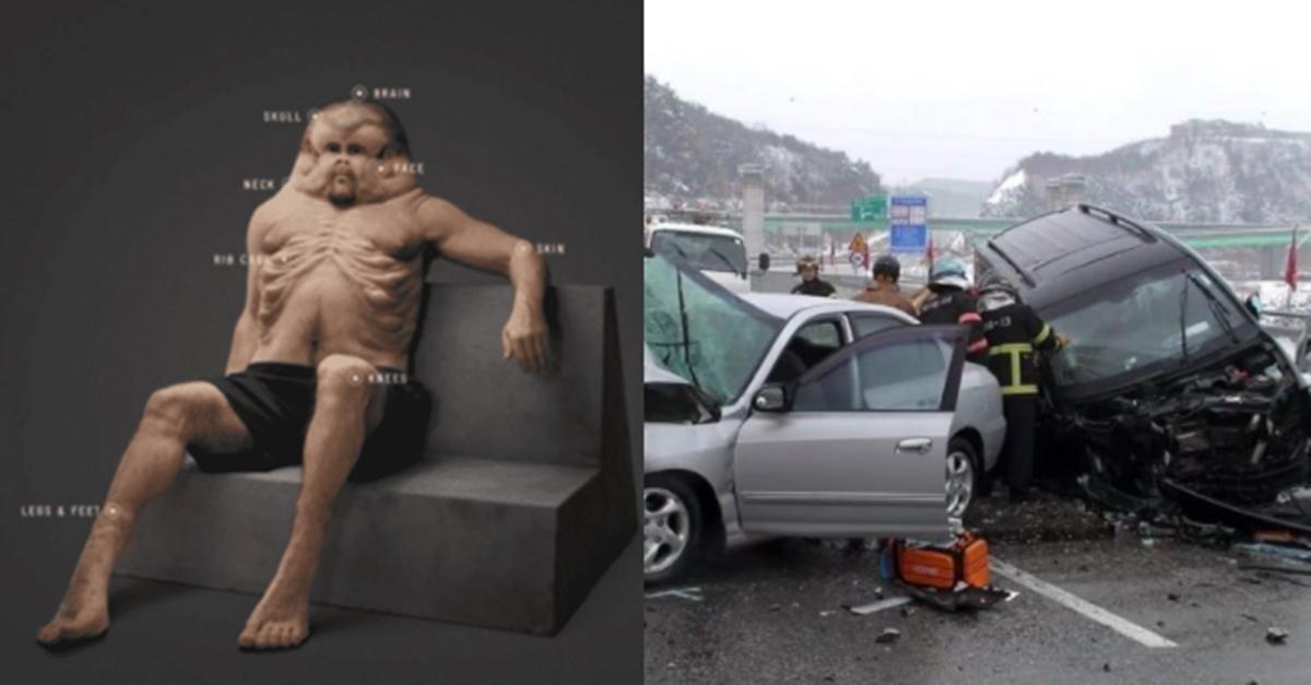 어떠한 '교통사고'에도 살아남는다는 인간의 비주얼 (+원리)