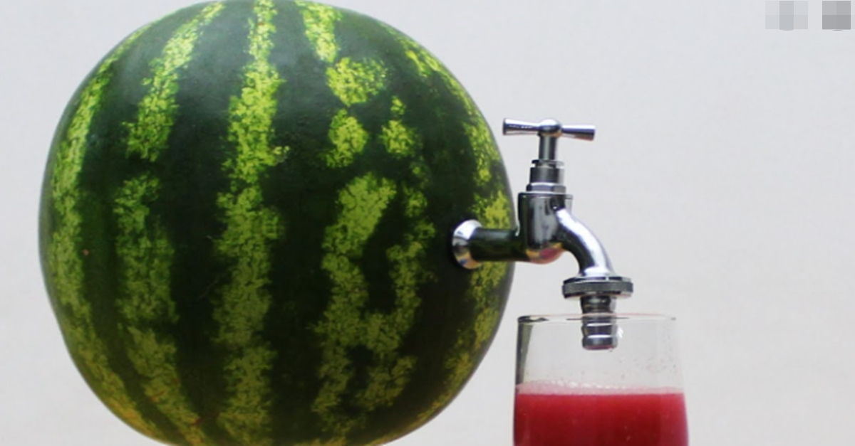 요즘 미국에서 난리났다는 여름철 수박 먹는법